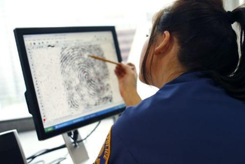 perito médico forense y pruebas en juicio
